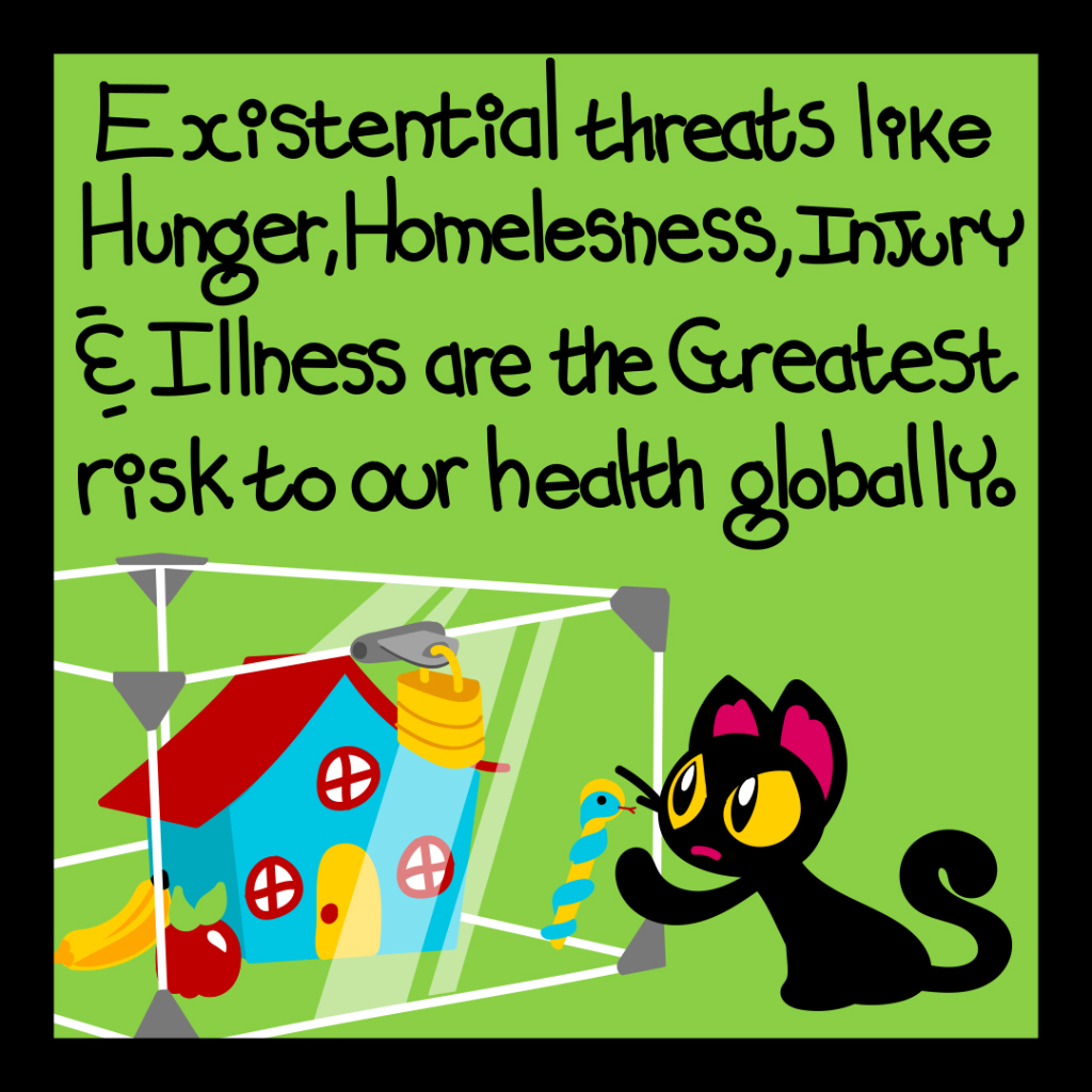 Existential threats like hunger, homelessness, injury and illness are the greatest risk to our health globally.
